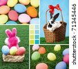 Collage of Easter eggs on green grass and rabbits in basket - stock photo