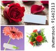 collage of flowers for mothers day and birthday - stock photo