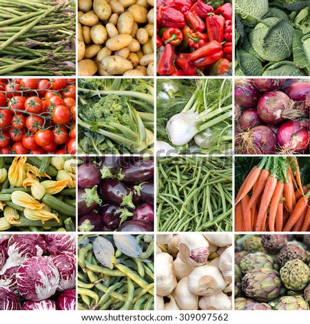 Collage of fresh vegetables from local farmers market - stock photo