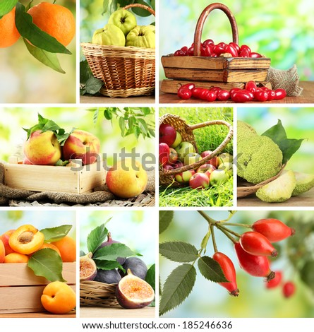Collage of garden fruits and berries - stock photo