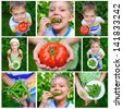 Collage of images kids holding tomato and green Peas in garden - stock photo