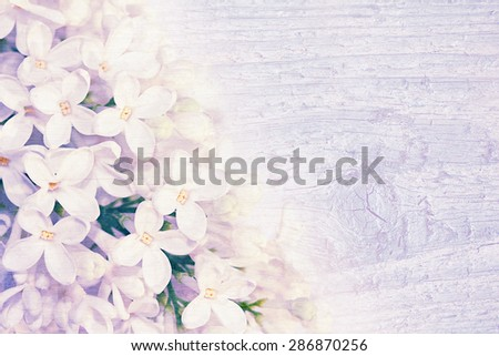 Collage of lilac flowers on a wooden textur. Vintage style.