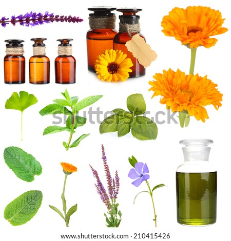 Collage of medicine bottle and herbs, isolated on white - stock photo