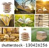 collage of photos opened book with leaves - lying on yellow grass on sunset cloudy sky - stock photo