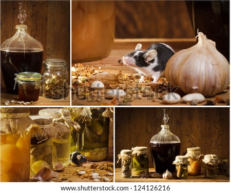Collage of stocks jar in the basement with small mouse - stock photo