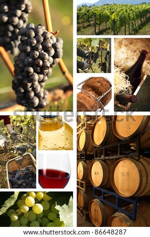 collage of wine pictures - stock photo