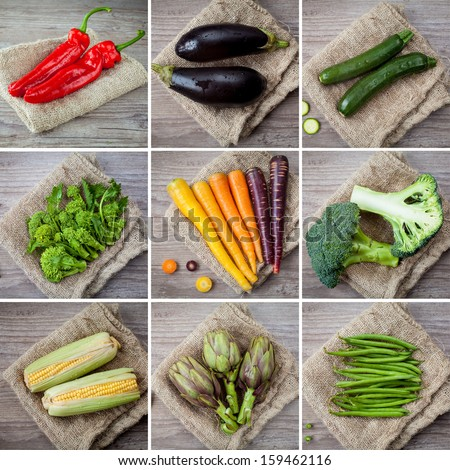 collage photo composition of different kind of vegetables - stock photo