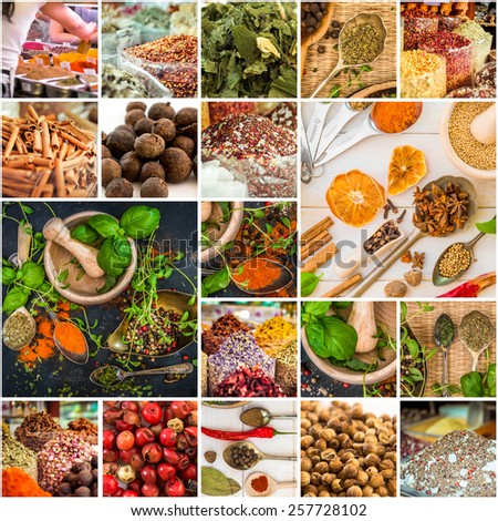 collage photos of various spices and herbs - stock photo