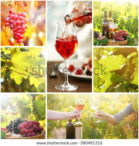 Collage with beautiful wine images, outdoors. - stock photo