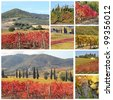 collage with fantastic landscape of tuscan vineyards in autumn, region of famous red italian wine Brunello di Montalcino, Italy, Europe - stock photo