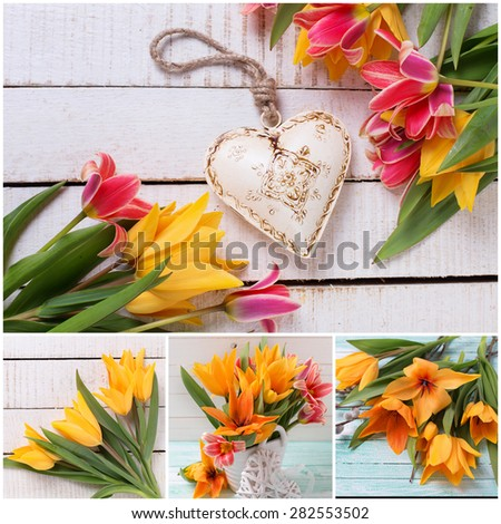 Collage with fresh  spring colorful red and yellow tulips  and white decorative heart  on white  painted wooden planks. Selective focus.  - stock photo