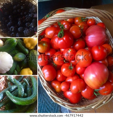 Collage with tomatoes, blackberry, cucumbers