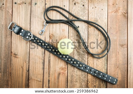 Collar and lead and a tennis ball - stock photo