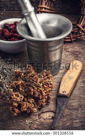 collected harvest medicinal herbs for medicinal - stock photo