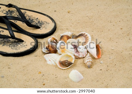 Collecting Shells on the Beach.  Seashells and Sandals on a Sandy Beach - stock photo