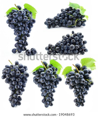 collection cluster of blue grape isolated on white background - stock photo