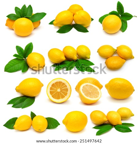 Collection lemon with leaves isolated on white background - stock photo