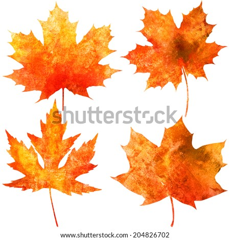 Collection of beautiful watercolor autumn leaves isolated on white background - stock photo