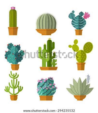 Collection of cactus in flat style. Green plant, flower and nature,  floral and exotic, wild botany tropical illustration - stock photo
