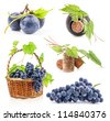 Collection of Dark grapes, bottle and cork, Isolated on white background - stock photo