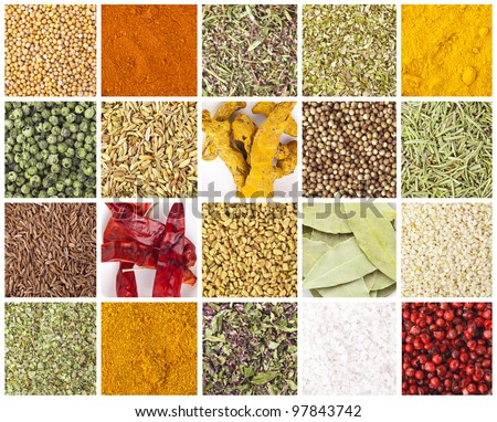 Collection of different spices and herbs - stock photo