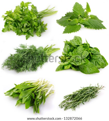 collection of fresh herbs isolated on white background - stock photo