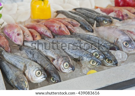 Collection of fresh mullet fish on display at seafood restaurant buffet - stock photo