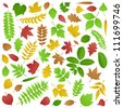 Collection of Green and Autumn Leaves - stock vector