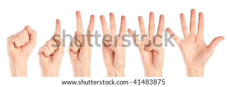 Collection of hands. Isolated on the white background
