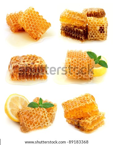 Collection of honeycomb and honey - stock photo