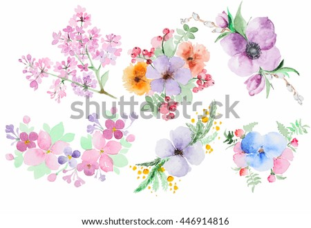 collection of isolated watercolor hand-drawn flowers on a white background - stock photo