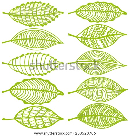 Collection of leaves - stock photo