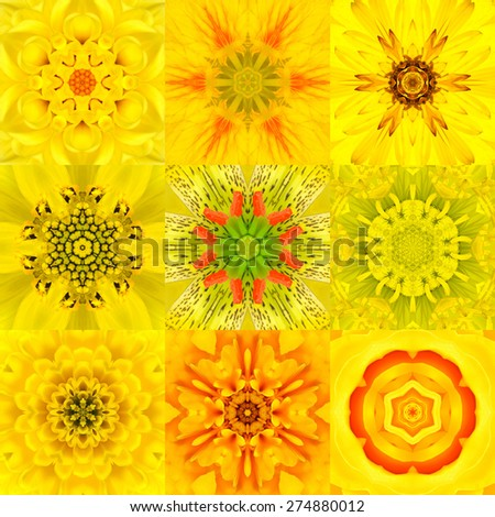 Collection of Nine Yellow Concentric Flower Mandalas. Kaleidoscope Concentric design. Full Flower Background - stock photo
