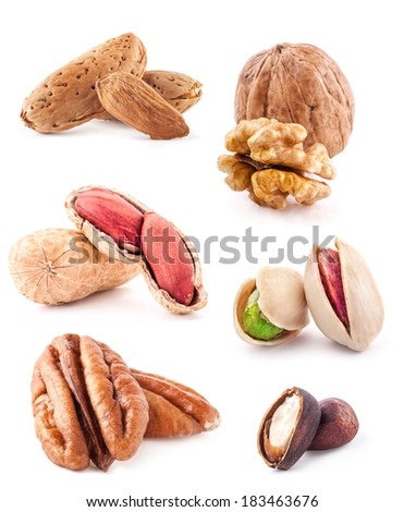 Collection of nuts isolated on white background - stock photo