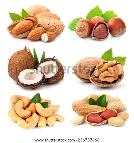 Collection of nuts on white background. - stock photo