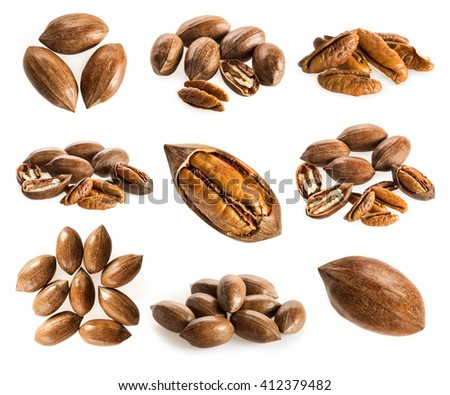 Collection of pecan nuts on white background