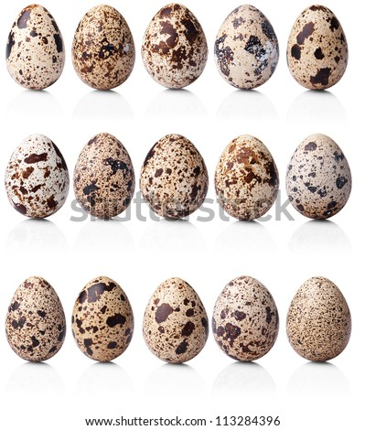 collection of quail eggs isolated on white background - stock photo