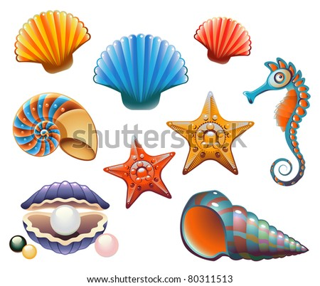 Collection of sea shells and stars - stock photo