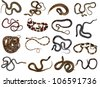 Collection of snakes from the Amazon rainforest - stock photo