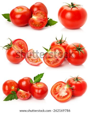 collection of tomatoes isolated on the white background - stock photo