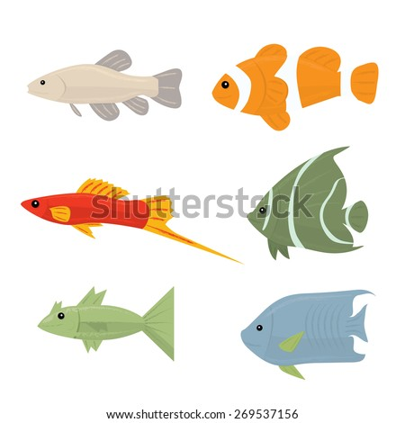 Collection of tropical fish - set of icons Isolated on white background - stock photo