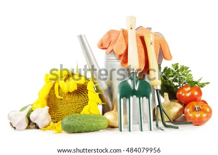 Collection of various vegetables and gardening tools isolated on white background