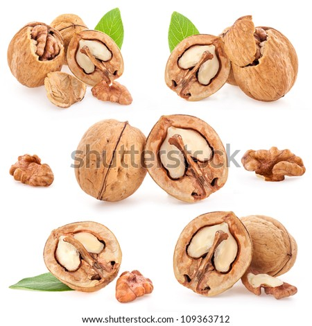Collection of Walnut and a cracked walnut isolated on the white background - stock photo