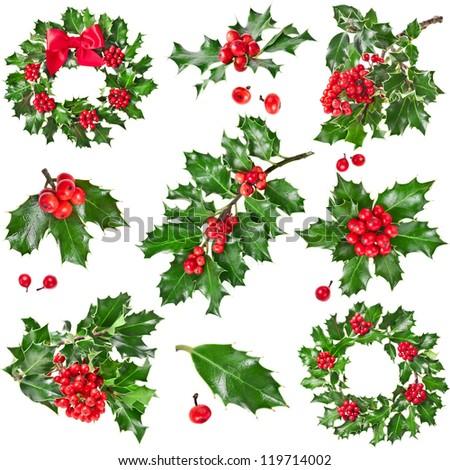 Collection set Christmas decoration of European holly ilex isolated on white background - stock photo