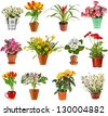 collection set of colorful bouquet flower  in flowerpot and bucket, isolated on white background - stock photo