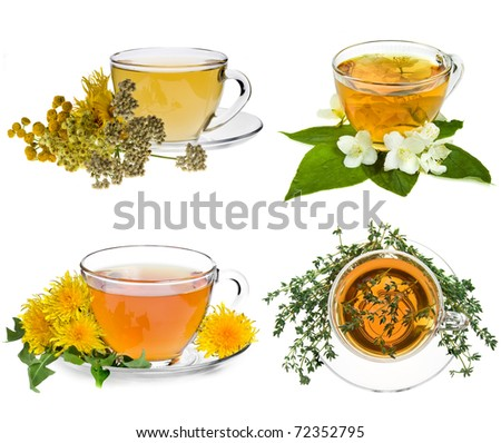Collection set of cup of herbal tea and fresh herb isolated on white background