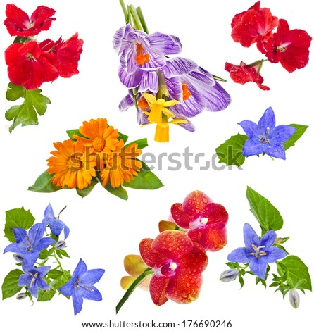 Collection set of flower bouquet Isolated on White Background  - stock photo