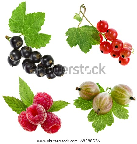 collection set of fresh garden berries isolated on a white background - stock photo