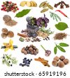 Collection set of spices and aromatic herbs, close up macro shot, isolated on white background - stock photo