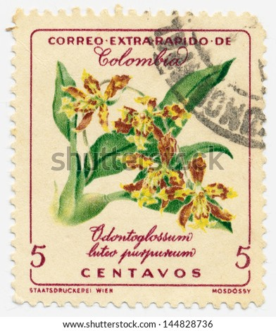 COLOMBIA - CIRCA 1960: A stamp printed in Colombia shows Odontoglossum luteo purpureum, circa 1960